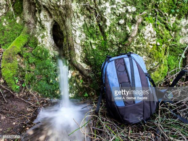 Birth of a river of water mountain cleans, that appears from a hole in a rock with roots and moss in the nature close to a excursionist  rucksack