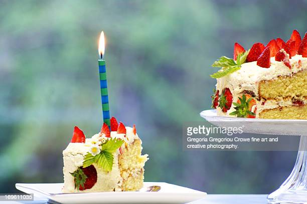 birthday candle on apiece of cake. - gregoria gregoriou crowe fine art and creative photography stock photos and pictures