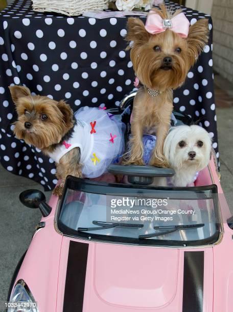 Birthday girl Chloe, center, shares her stylish pink