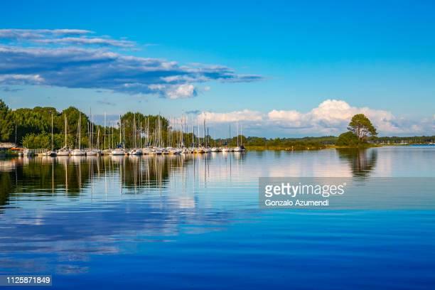 biscarrosse lake in france - biscarrosse photos et images de collection
