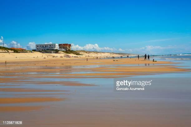 biscarrosse plage in france - biscarrosse photos et images de collection
