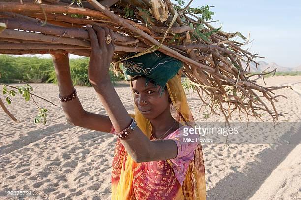 Bishnoi woman carrying firewood, Rajasthan, India