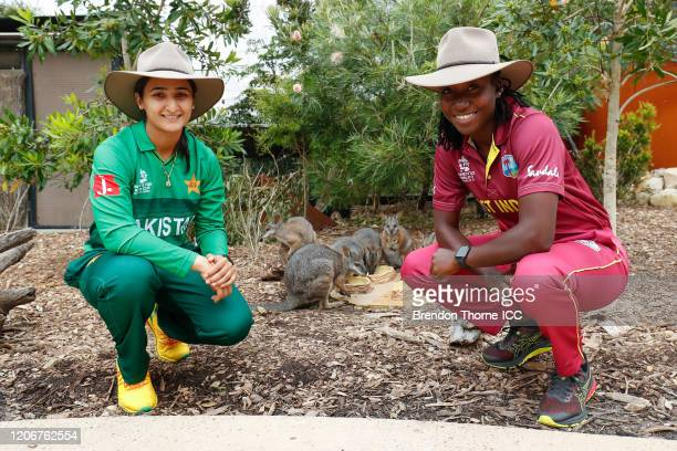 Bismah Maroof of Pakistan and Stafanie Taylor of the West Indies pose with Tammar wallabies during the ICC 2020 Women's Twenty20 World Cup Captains...