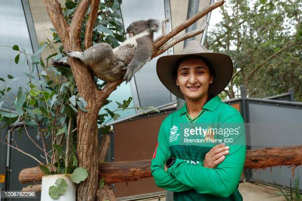 Bismah Maroof of Pakistan poses with a Koala during the ICC 2020 Women's Twenty20 World Cup Captains media call at Taronga Zoo on February 17 2020 in...