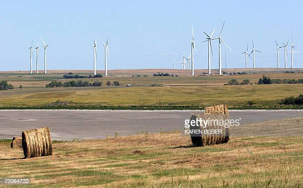 Bismarck, UNITED STATES: This 04 September, 2006 photo shows a wind farm located north of Bismarck, North Dakota. AFP PHOTO/Karen BLEIER