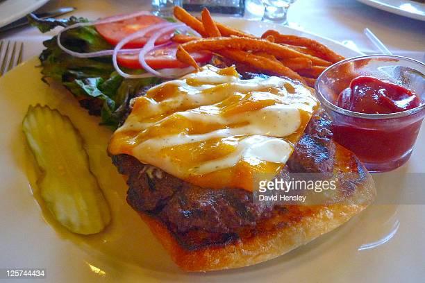 Bison and Elk burger