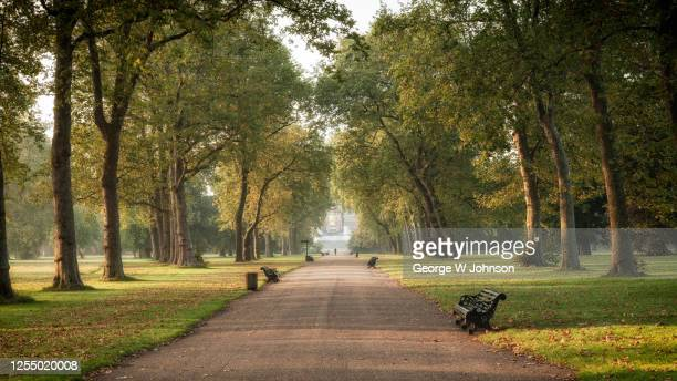 a bit of fresh air - hyde park london stock pictures, royalty-free photos & images