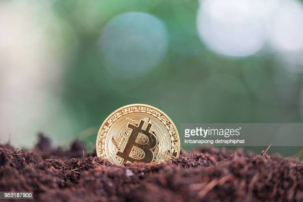 Bitcoin. Physical bit coin. Digital currency. Cryptocurrency. Golden coin with bitcoin symbol isolated on green background.