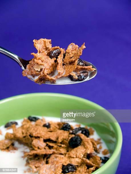 Bite of Raisin Bran Cereal