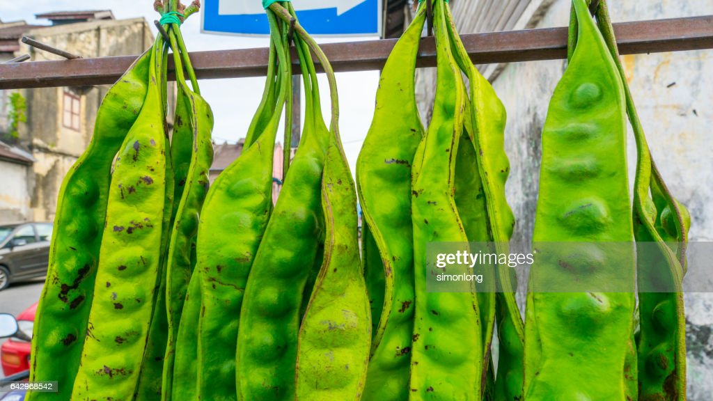 Bitter bean, Twisted cluster bean or Stink bean : Stock Photo