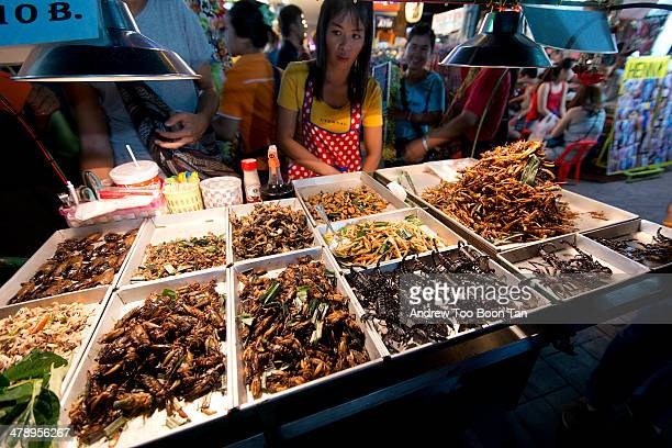 Bizarre food stall in Khao San Bangkok showing a woman selling fried scorpions roaches worms grasshoppers and other bugs as snacks