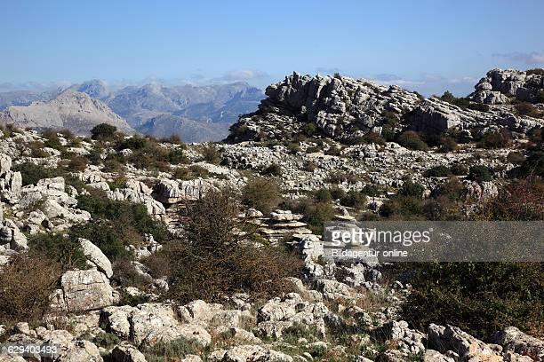 Bizarre rock formations in National Park El Torca Paraje Natural Torcal de Antequera El Torcal de Antequera is a nature reserve in the Sierra del...