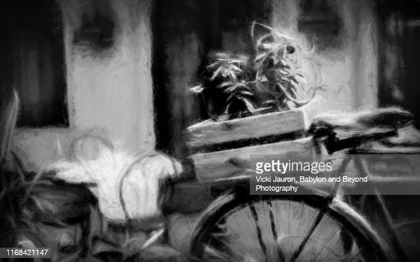 black and white artistic scene with bicycle and plants - vignettierung stock-fotos und bilder