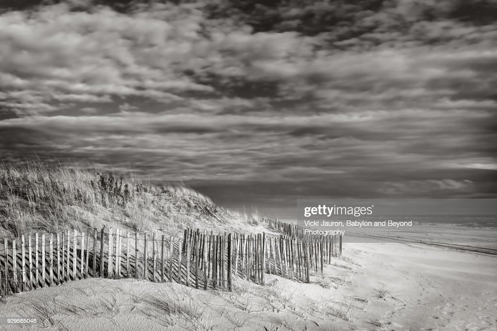 Black and white beach scene with fence stock photo