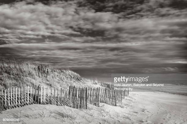 Black and White Beach Scene with Fence