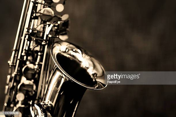 Black and white close up of alto saxophone