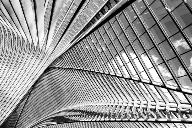 Black and white exposure of modern metal and glass roof construction