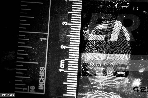black and white fingerprint - crime stock pictures, royalty-free photos & images