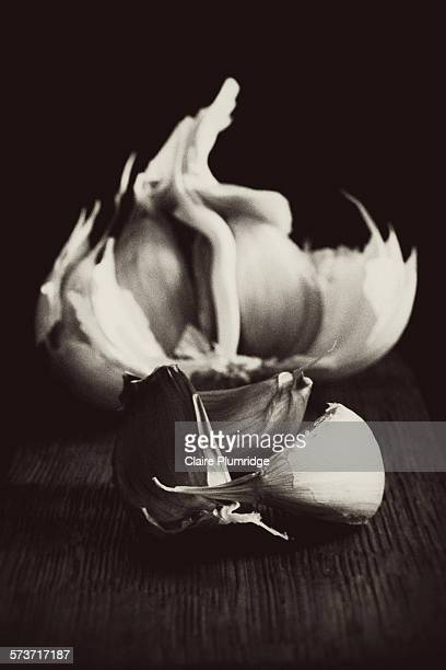 black and white garlic cloves - black and white vegetables stock photos and pictures