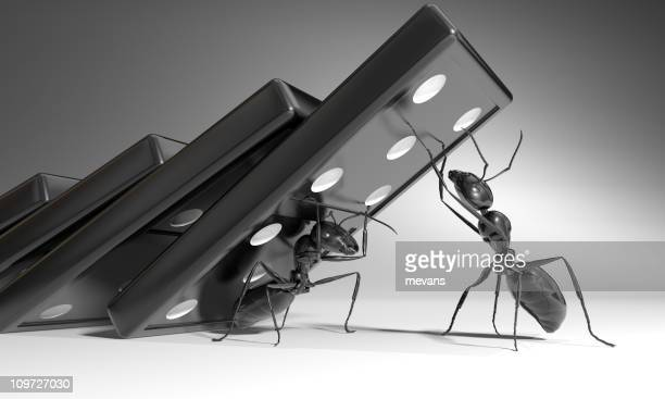 Black and white image of ants holding up dominos