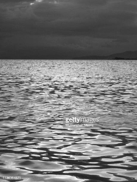 Black and white image of Seamless Water Surface Pattern