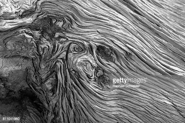 Black and white image of weathered wood
