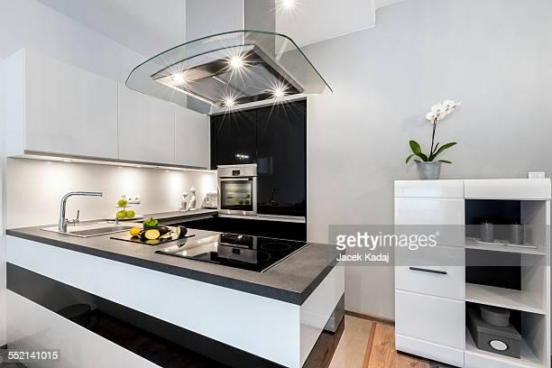 Black and white kitchen modern interior design