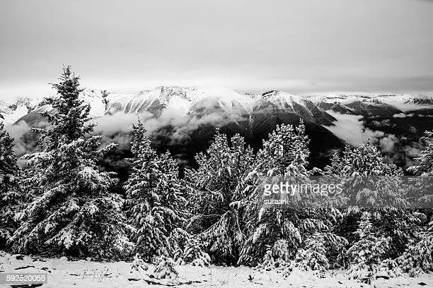 black and white - sulphur mountain stock pictures, royalty-free photos & images