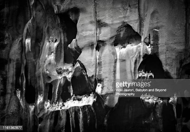 black and white rock face of rookery at heimaey island, iceland - rookery stock pictures, royalty-free photos & images