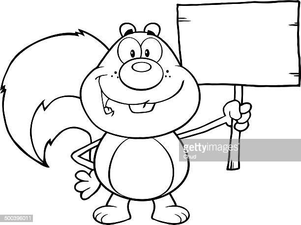 Black and white squirrel holding a wooden board