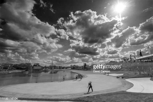 Black and white version of original colour image and graduated neutral density filter used on this image Francesco Molinari celebrates holing a long...