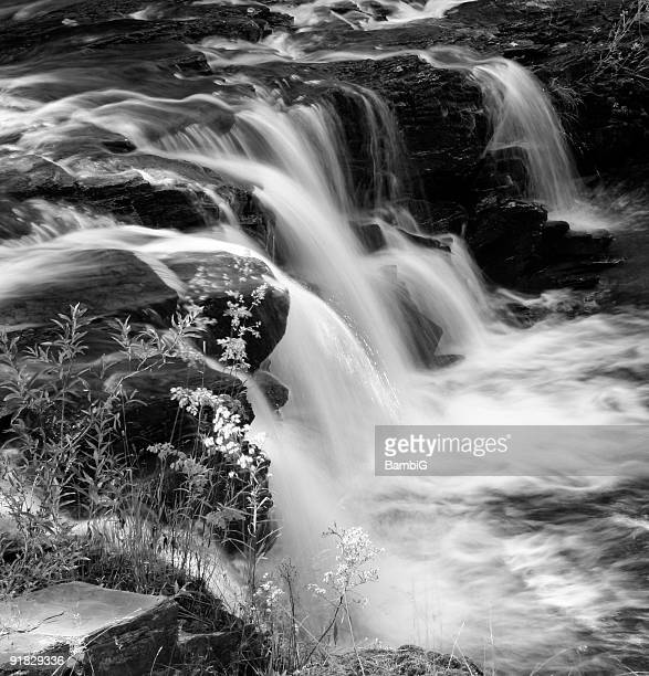 black and white waterfall - swift river stock photos and pictures