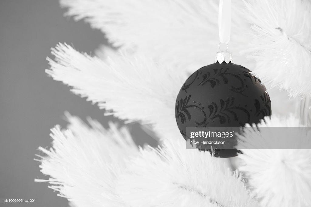 Black christmas ornament hanging on tree : Stockfoto