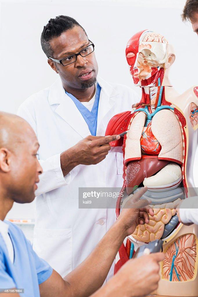 doctors teach patients