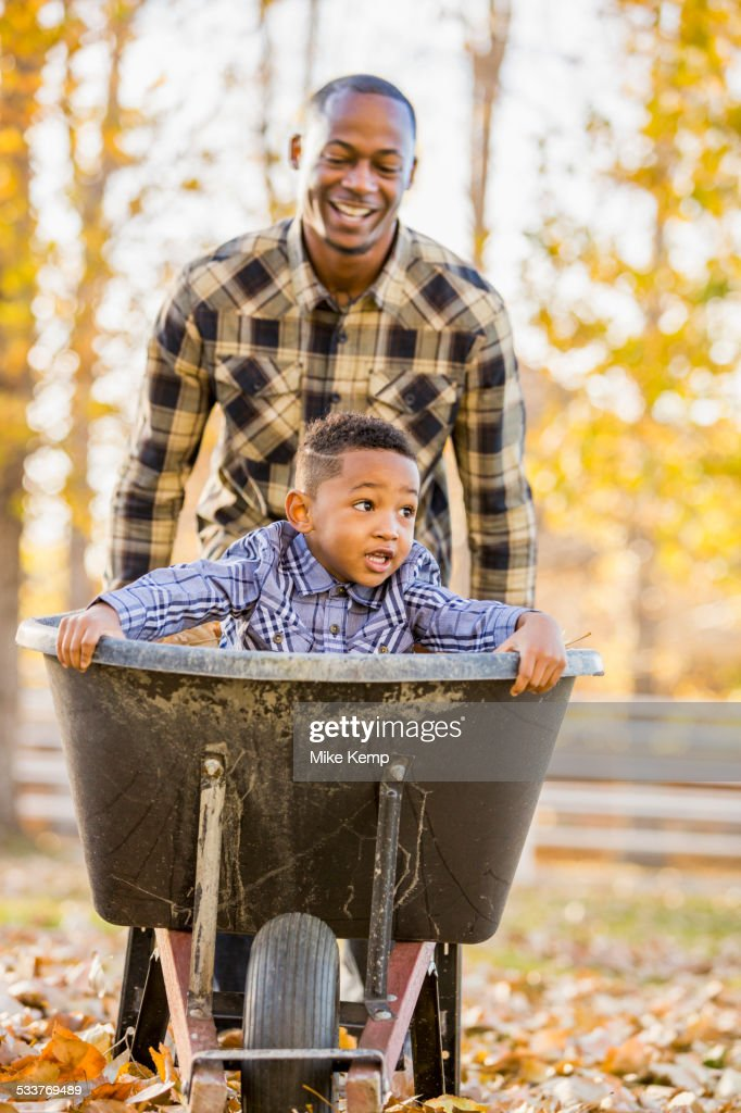 Black father pushing son in wheelbarrow in autumn leaves : Foto stock