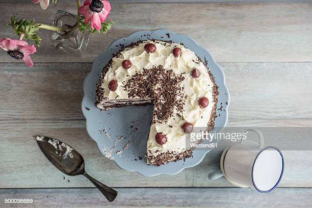 Black Forest Cake on blue cake stand and grey background, elevated view