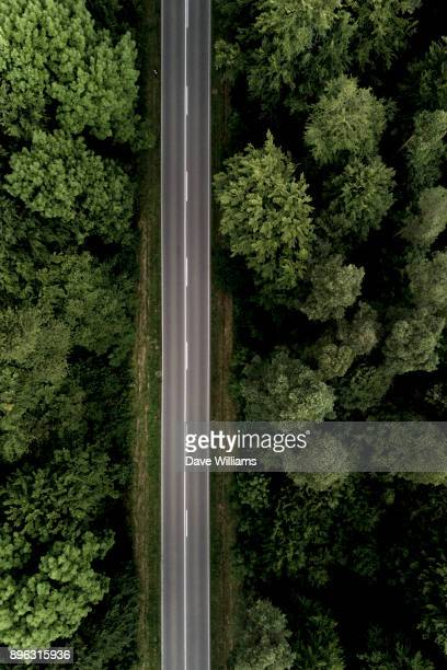 Black Forest Drive