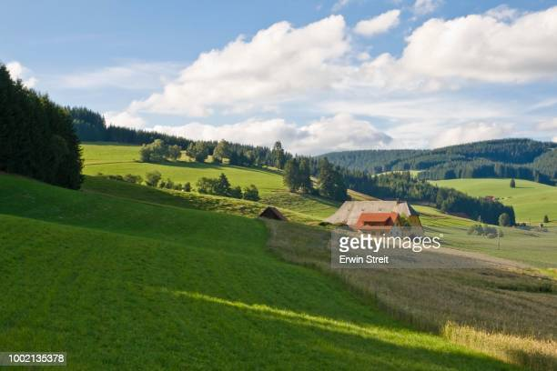 Black Forest farm in the Viertaelerland region at Titisee, Black Forest, Baden-Wuerttemberg, Germany