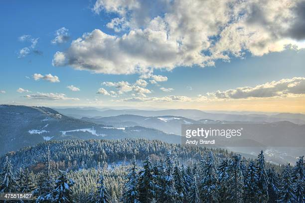 black forest - hilltops and forests in winter - baden württemberg stock pictures, royalty-free photos & images