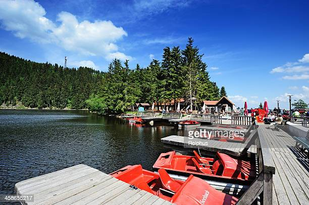black forest lake mummelsee coast view summer - sonnig stock pictures, royalty-free photos & images