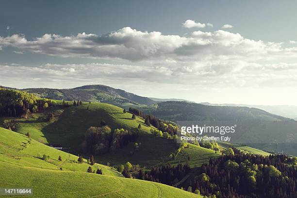 black forest mountain - baden württemberg stock photos and pictures