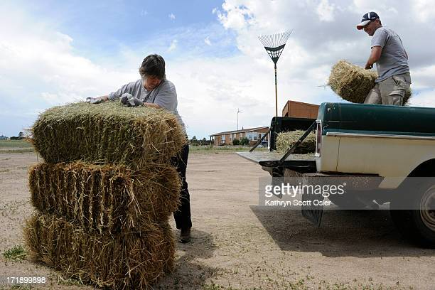 Black Forest resident Jason Kerekes right brings a truck full of hay bales to donate and Colorado Horsecare Foodbank board member Marty Jackson helps...