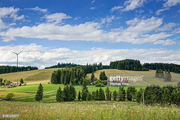 black forest scene - baden württemberg stock pictures, royalty-free photos & images