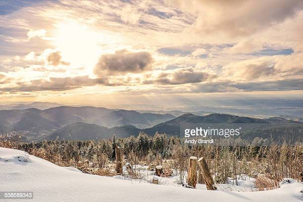 Black Forest - Shooting from Snowy Mountaintop