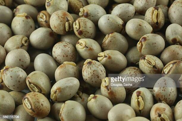 Black Garbanzo Beans (chickpeas)