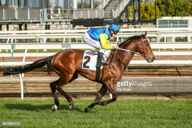 Black Heart Bart ridden by Brad Rawiller before the PFD Food Services Makybe Diva Stakes at Flemington Racecourse on September 16 2017 in Flemington...