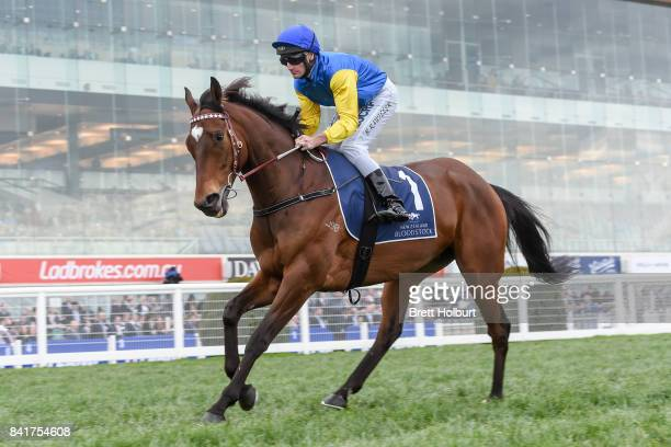 Black Heart Bart ridden by Brad Rawiller heads to the barrier before the New Zealand Bloodstock Memsie Stakes at Caulfield Racecourse on September 02...
