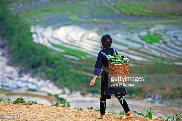 black hmong people, sa pa, vietnam - indigenous culture stock pictures, royalty-free photos & images