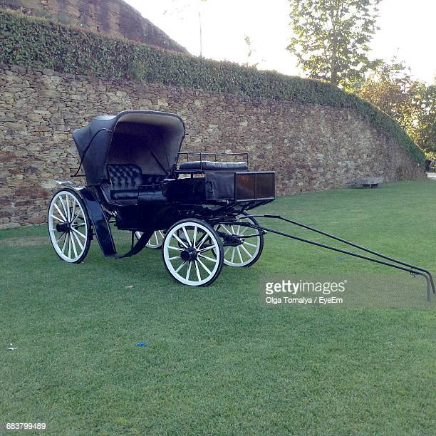 Black Horse Cart On Grassy Field