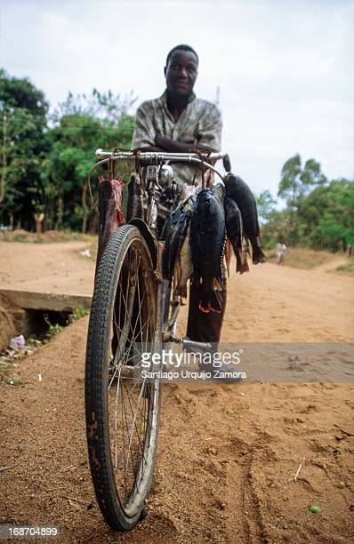 CONTENT] A black man carrying fresh fish in the handlebar of his bicycle for selling them in the local market of Nkhotakota Central Region Malawi...